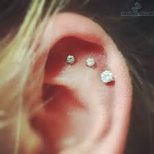 inner_ear